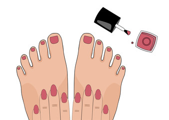 Manicure and pedicure. Beauty. Vector illustration