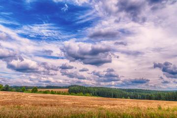 Fotoväggar - Landschaft im Sommer Kornfeld