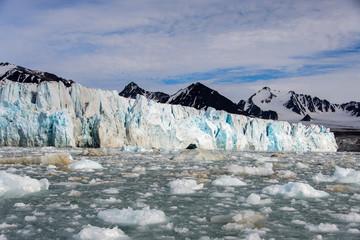Arctic landscape