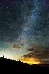 Milky Way and sky full of stars reaching across the night sky, light from horizon behind treed mountain