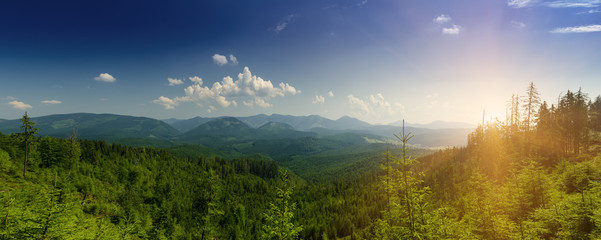 Keuken foto achterwand Bos in mist Carpathian mountains summer landscape with blue sky and clouds, natural background. Panoramic view