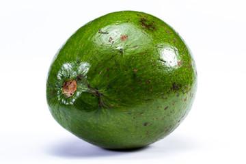 large green avocado