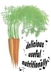 Sweet carrots. New crop