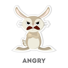 Isolated angry rabbit.