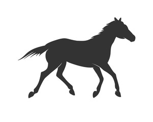 Beautiful Standing Horse Silhouette