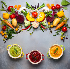Concept of healthy vegetable  soups