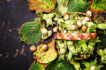 Fresh harvest of hazelnuts in a basket, top view