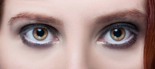Woman's hazel eyes with makeup and brown eyebrows
