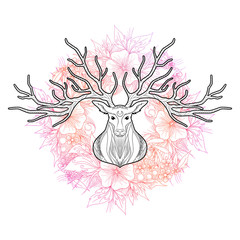 Deer head on beautiful floral background, vector illustration