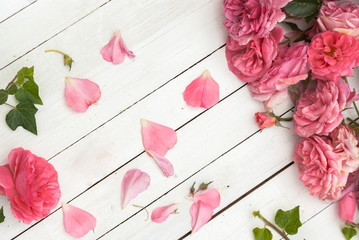Romantic pink roses on white wooden background