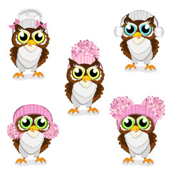Owls in knitted hats set