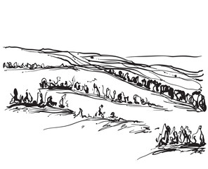 Landscape with fields and trees. Sketching