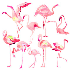 Beautiful watercolor flamingos, isolaned on a white. Big set.