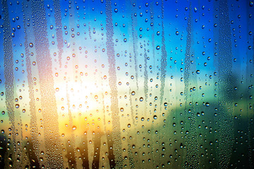 Water droplets at sunrise.