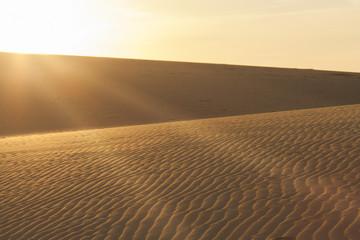 Sun rays over the sand dunes.