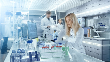 Team of Research Scientists Working With Personal Computer, Analysing Test Trial New Generation Drug Data. They Work in a Modern Laboratory/ Medical Center.