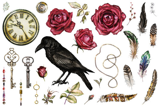 Large watercolor, Gothic set with a crow, red roses, keys, feathers, clock, jewelry. Flowers and a bird in a tattoo style. Illustration isolated on white background. Vintage.