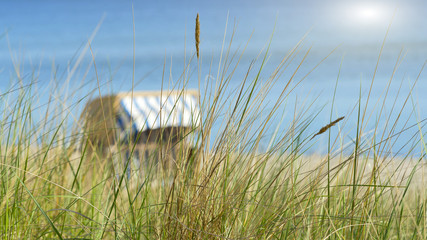 Dünengras und Strandkorb am Meer