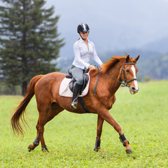 Young woman riding sorrel horse on green mountain meadow. Equestrian activity background
