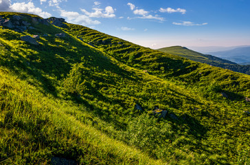 steep grassy slope in summer mountains