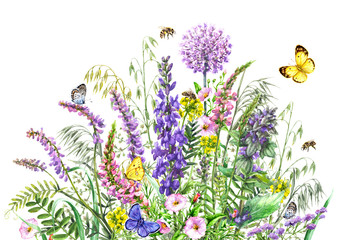 Watercolor wild flowers and insects