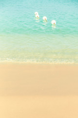 Wall Mural - Idyllic beach with water, sand and swimming buoys