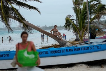 A woman sits on a palm tree on a beach where boats are sheltered by the proximity of tropical storm Frankiln that is near the coast of Quintana Roo, in Tulum