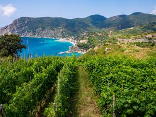 Spoed Foto op Canvas Liguria Cinque Terre trail near Monterosso al Mare