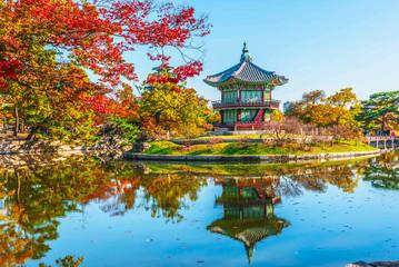 Garden Poster Kyoto Gyeongbokgung Palace focus dark tones and a maple tree in autumn Korea