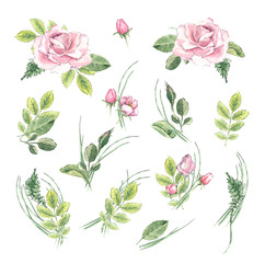 Watercolor vintage floral set. Spring or summer decoration floral bohemian design. Watercolor isolated. There are poppy, wheat, rose, lavender.