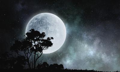 Night natural landscape Fotoväggar