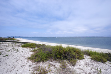 Silverstrand beach on Coronado Island, looking towards San Diego