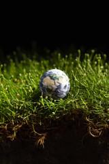 World globe shape of green grass