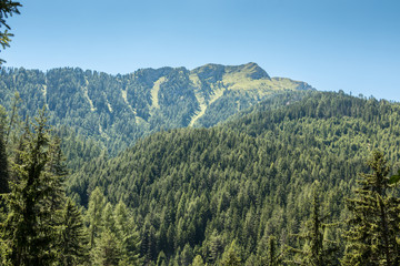 Berge und Wälder