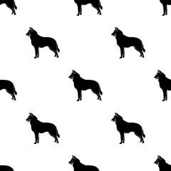 The dark Belgian wolf. Belgium single icon in black style vector symbol stock illustration.