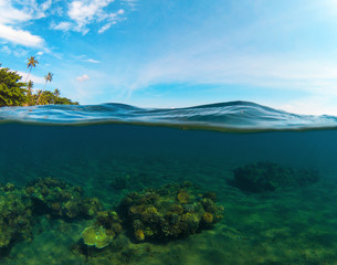 Double landscape with sea and sky. Split photo with tropical island and underwater coral reef.