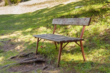 Wooden bench in the park in summer sunset
