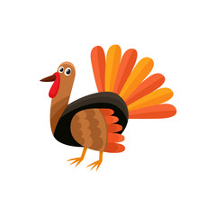 Cute and funny farm hen turkey character, cartoon vector illustration isolated on white background. Cartoon style turkey character, Thanksgiving Day symbol
