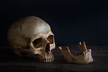 Skeleton skull head and jaw on old brown wooden table in the morgue with dim light