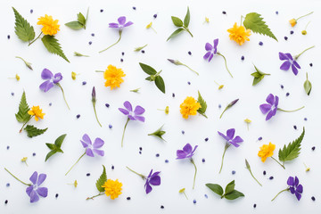 Floral pattern made of colorful spring flowers and green leaves on white background. Flat lay, top view.