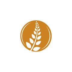 circle wheat vector logo