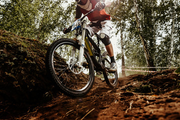 rider of bike downhill mountain biking trail in sunlight Wall mural