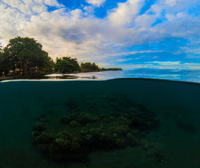 Double landscape with sea and sky. Above and below waterline in tropical seashore.