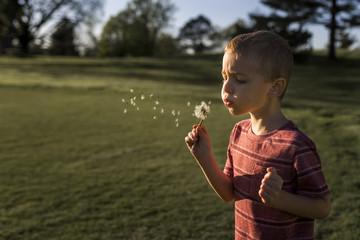 Boy blowing dandelion seeds at park