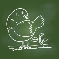 Hand drawing Bird  on Green board -Vector illustration