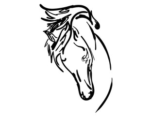 Attempt a sketching horse
