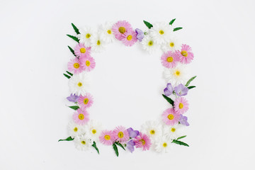 Floral frame of white and pink chamomile daisy flowers, green leaves on white background. Flat lay, top view. Daisy background. Mock up frame of flower buds.