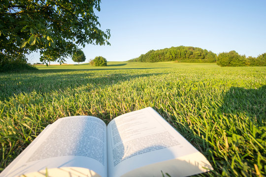 Reading a book in a Park in the nature, point-of-view-shot. In Bavaria, Germany.