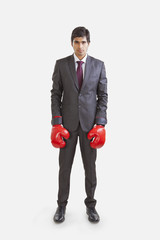Portrait of a business executive with boxing gloves