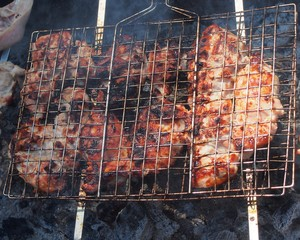 Preparation of chicken meat on the coals. Grill.